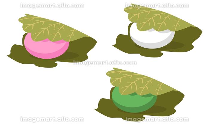 イラスト素材 かしわ餅 柏餅 和菓子 スイーツ デザート ベクターの販売画像