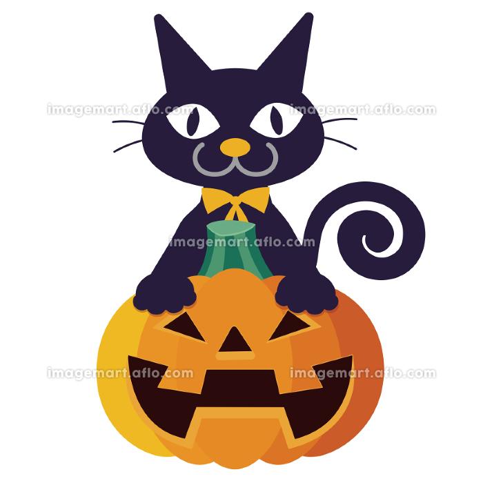 ハロウィン黒猫の販売画像