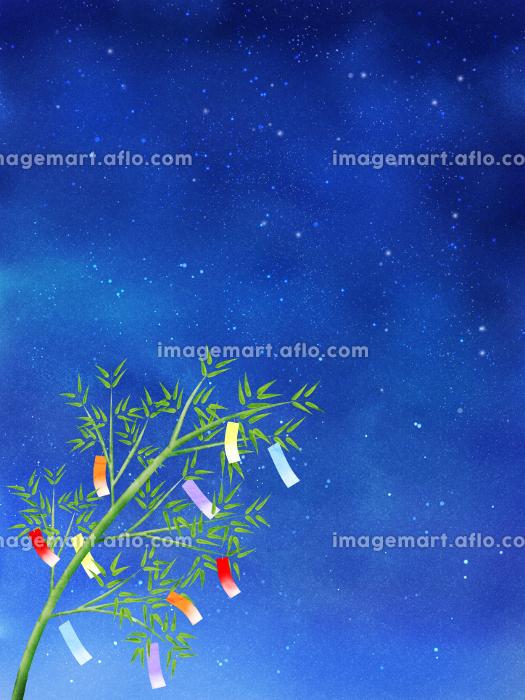 夜空と短冊が揺れる笹(タテ)の販売画像