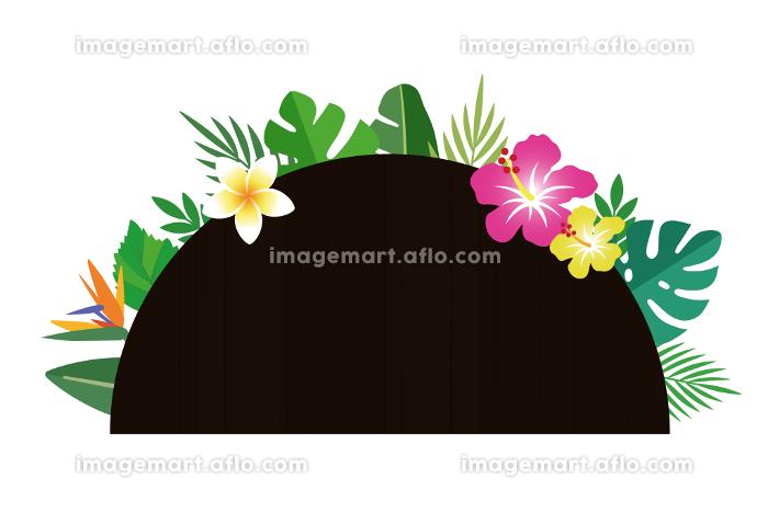 南国の花と葉、ボタニカル。半円の華やかな背景装飾の販売画像