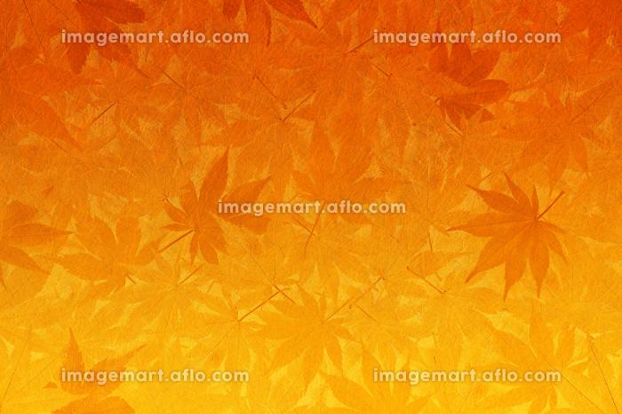 和紙と紅葉の背景 オレンジ色から黄色のグラデーションの販売画像