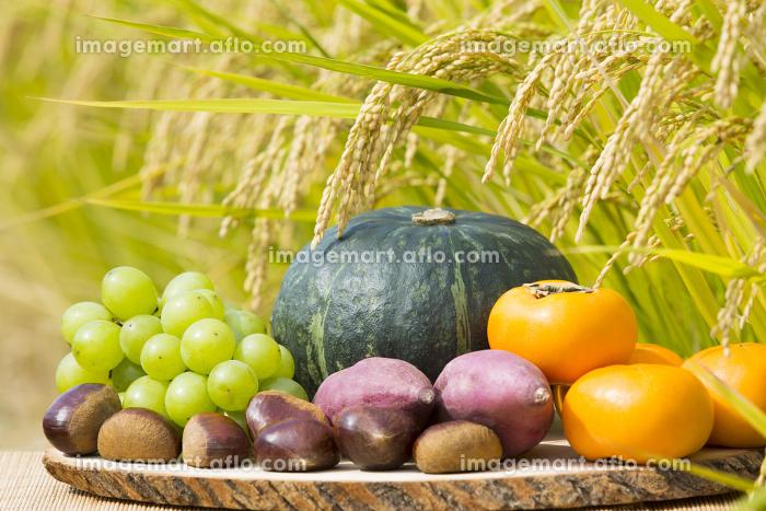 秋の食材と収穫間近の稲穂