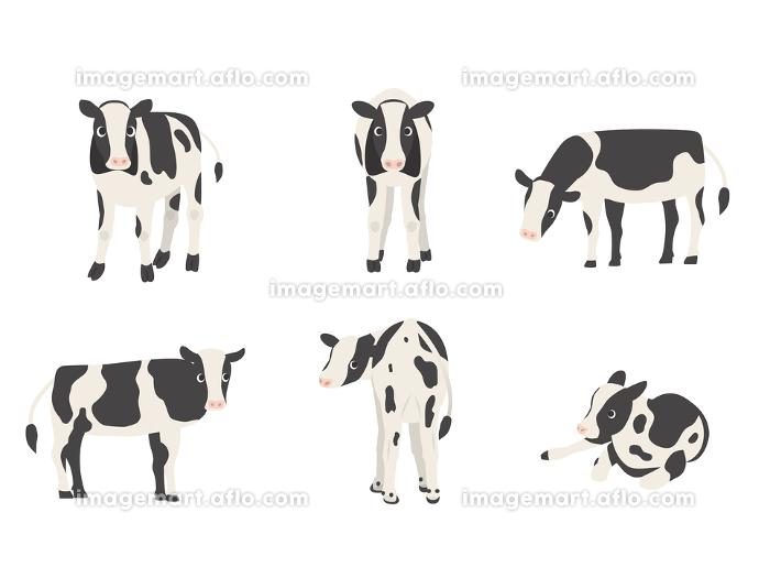 子牛 ホルスタイン 向きバリエーションセットの販売画像