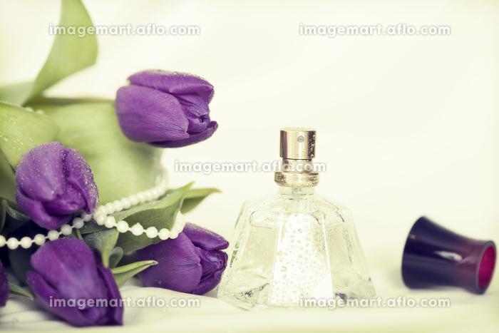 生きる 流動的 花の販売画像