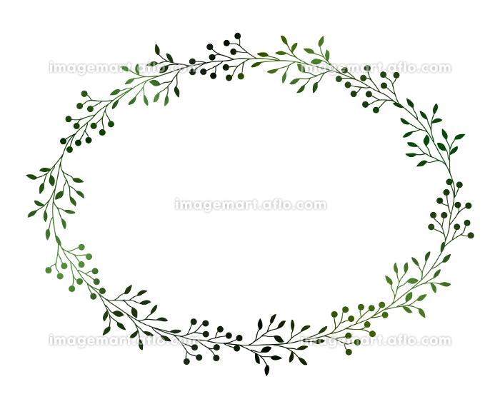 緑の小枝と実のフレームイラスト 3の販売画像