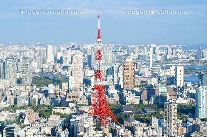 上空から見た東京タワーの販売画像
