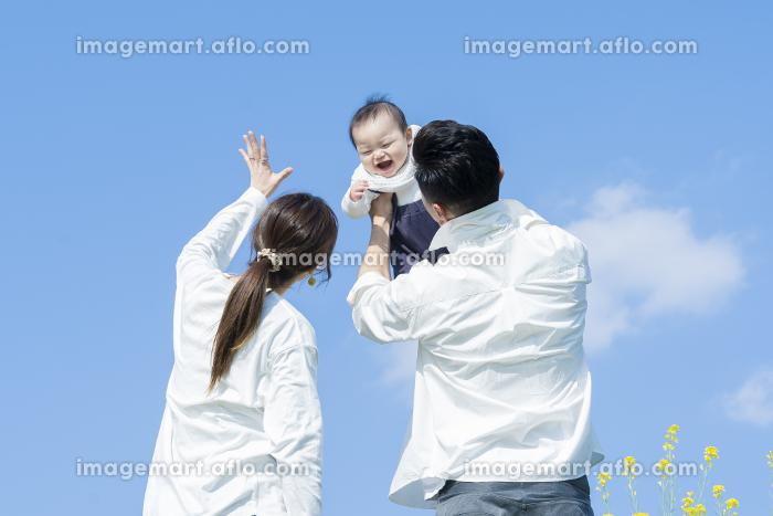 青空のもと、赤ちゃんを高く抱き上げる父母の販売画像