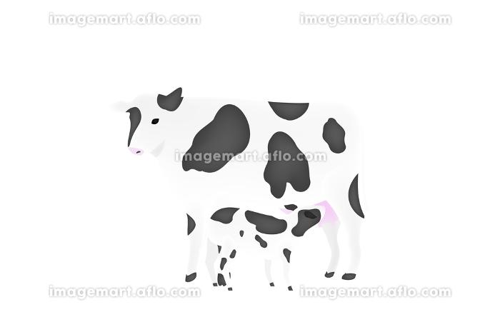 母牛の乳を吸う子牛のイラスト 透過背景の販売画像
