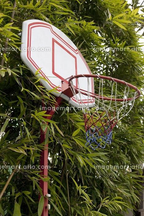 バスッケトボールのゴールの販売画像