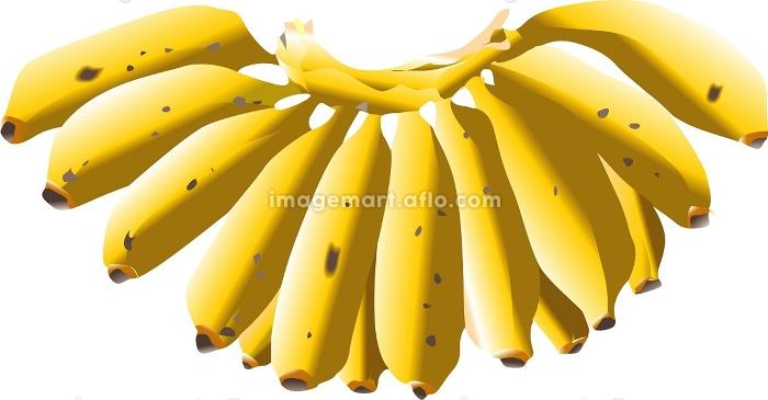 モンキーバナナの販売画像