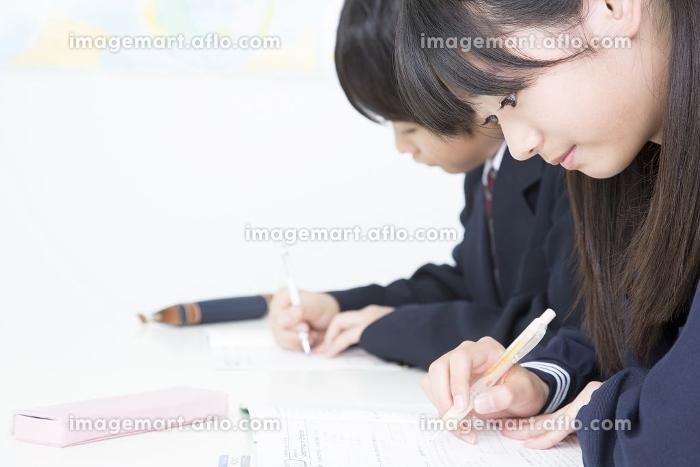 勉強する中学生の販売画像