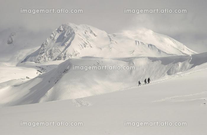 ワンダーランド カバーされる 降雪の販売画像