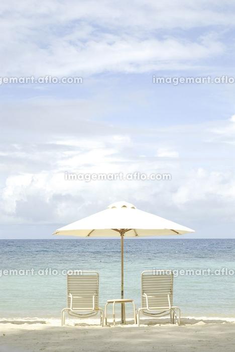 ビーチの販売画像