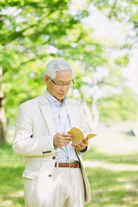 新緑と読書をするシニアの日本人男性
