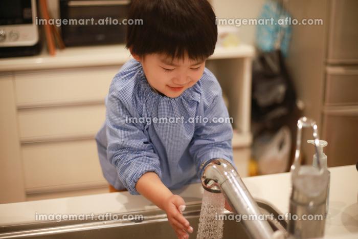 手洗いする男の子の販売画像
