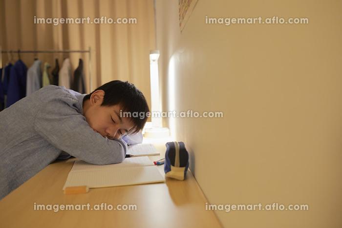 机で居眠りをする男子中学生の販売画像