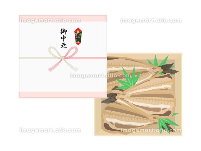 魚の干物の御中元のイラストの販売画像
