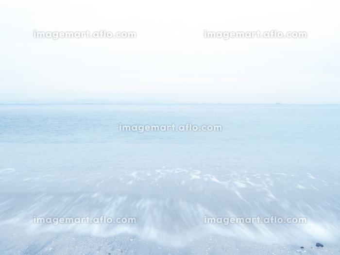 梅雨時の曇り空と穏やかな波の東京湾の販売画像