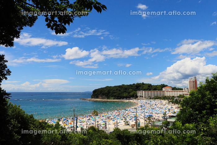 白浜 白良浜リゾート 和歌山県の販売画像