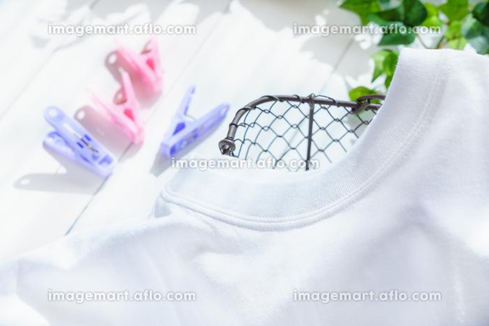 洗いたてのシャツの販売画像