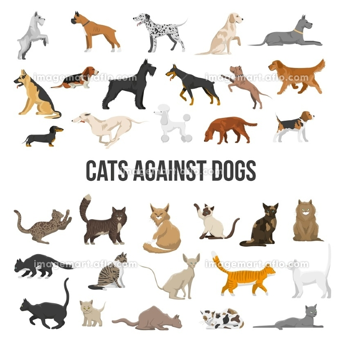 Breed Set Of Dogs And Cats . Colored icons set of different breeds of dogs and cats on white background isolated vector illustration