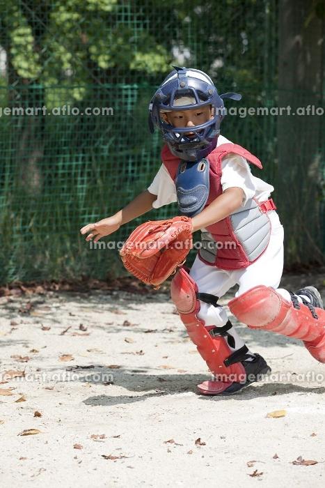 少年野球の守備練習の販売画像