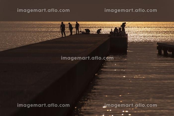 夕日に照らされた堤防で釣りを楽しむ人々の販売画像