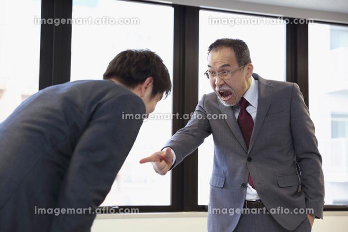 叱る日本人ビジネスマン