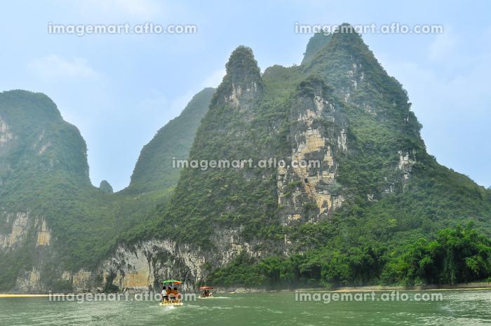 アジア 木 山の販売画像