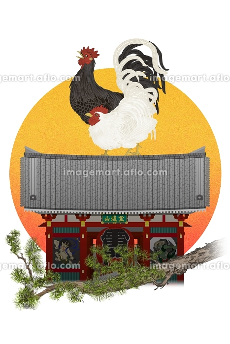 2羽のニワトリと雷門と朝日 イラストの販売画像