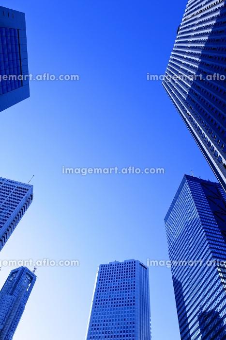 新宿の高層ビル群の販売画像