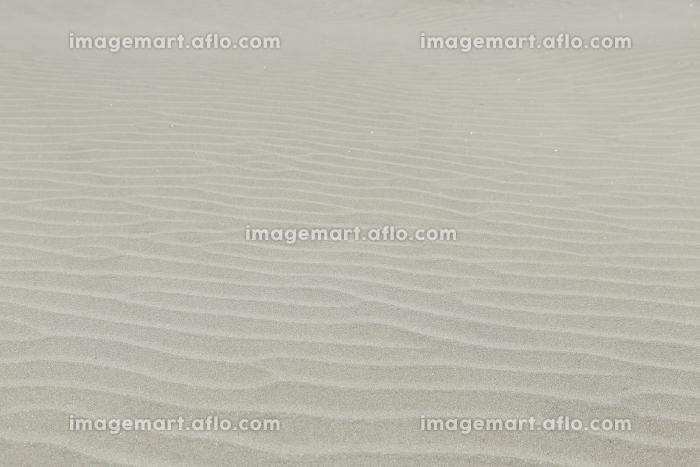 砂浜の合成向き背景素材の販売画像