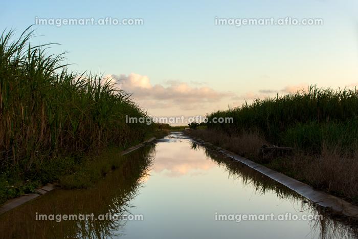 日本最南端、沖縄県波照間島・2月の風景の販売画像
