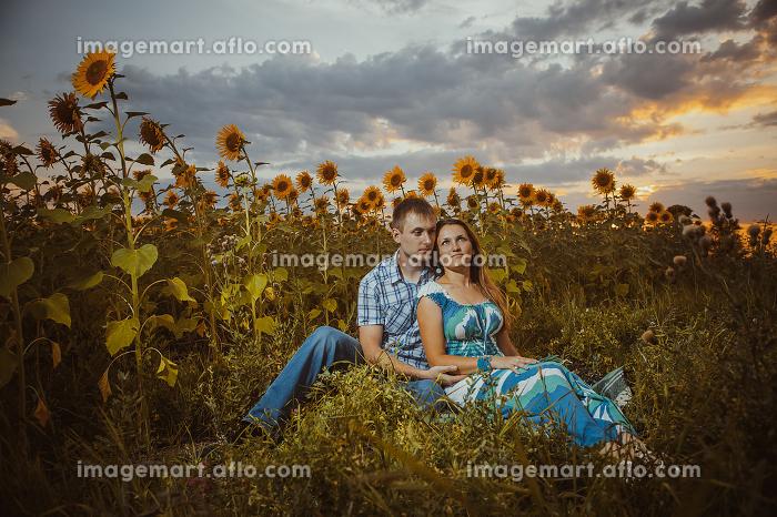 Beautiful couple having fun in sunflowers fieldsの販売画像