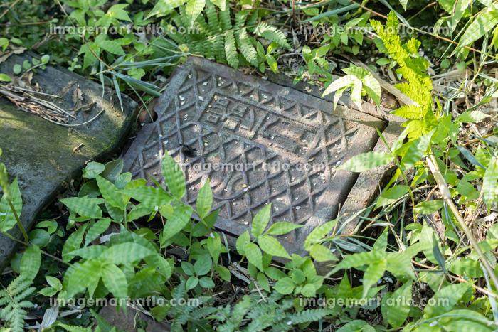 草むらにある水道メーターの販売画像