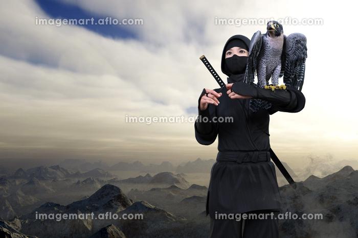 山々が密集し雲より高い場所で肩にはやぶさを乗せたくノ一が背中に忍者刀を背負い任務のため行動するの販売画像