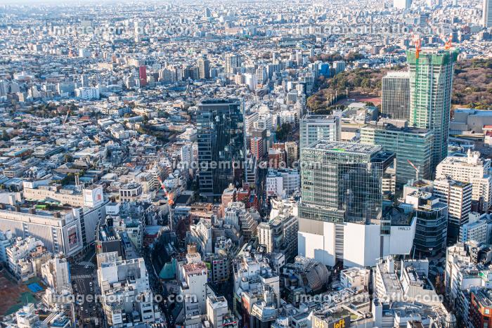 高層ビルの販売画像