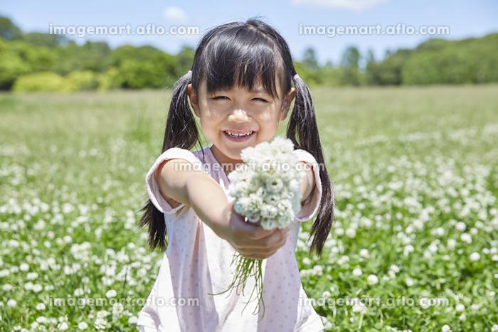 春の公園で花を摘む日本人の女の子
