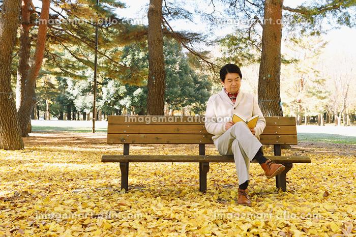 黄葉と読書する日本人男性の販売画像
