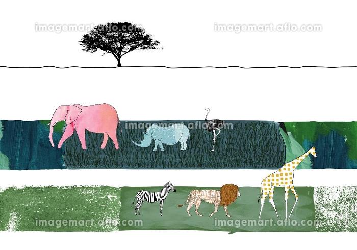 サバンナの動物達の販売画像