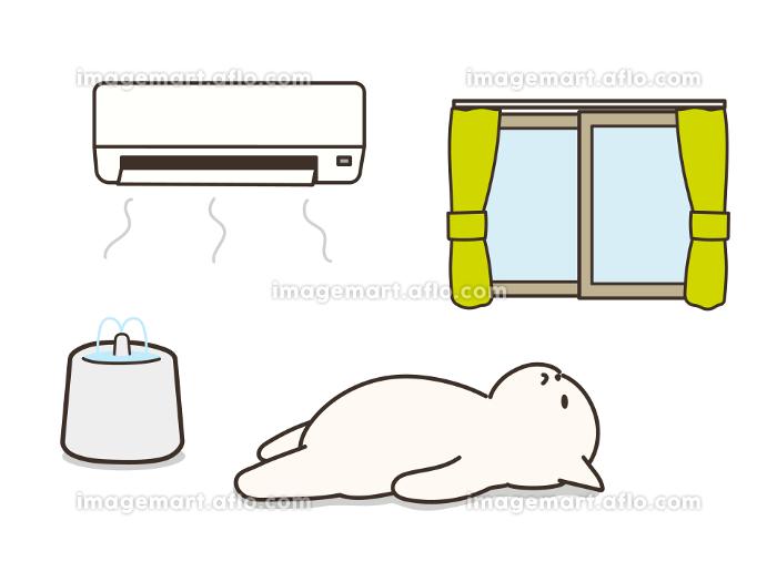 エアコンの付いた部屋で仰向けで寝ている猫 熱中症対策 給水器の販売画像