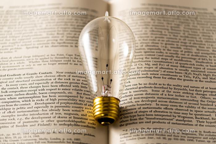 裸電球と英語の本の販売画像