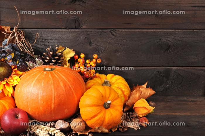 pumpkinsの販売画像