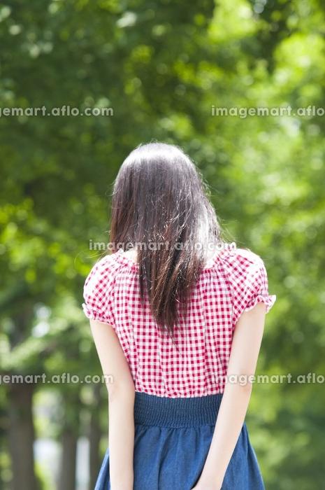 新緑の下を歩く女性の販売画像