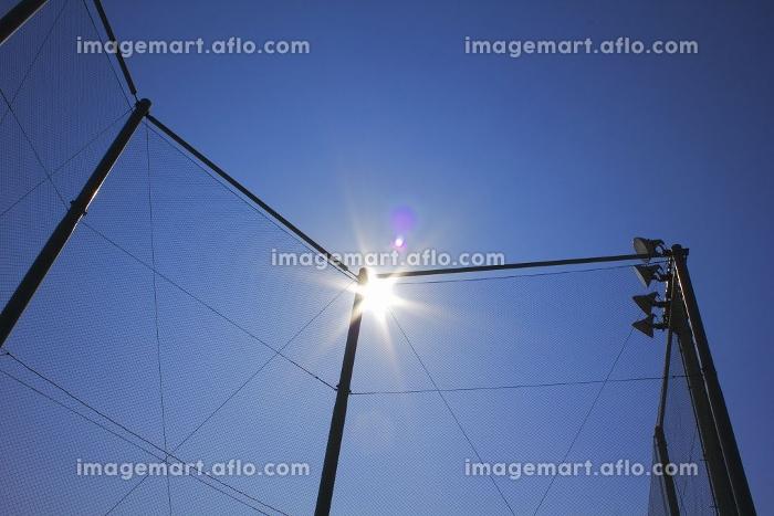 中学校の運動場のネットと青空の販売画像