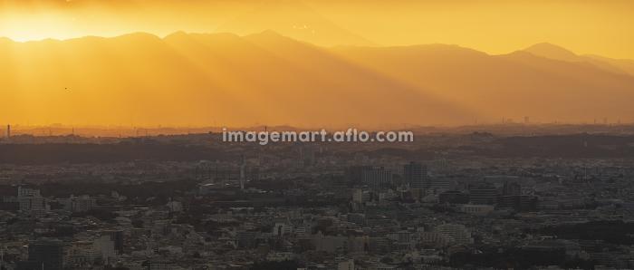 都市の夕暮れの販売画像
