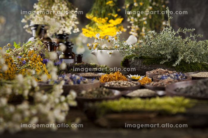 Herbs, berries and flowers with mortar, on wooden table backgroundの販売画像