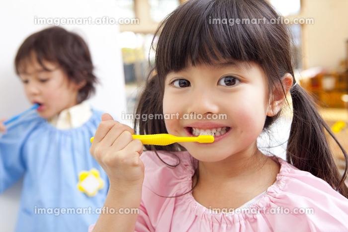 歯磨きをする幼稚園児の販売画像
