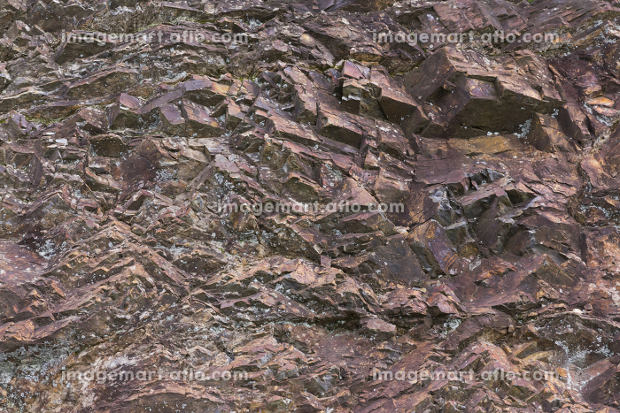 自然石の表面の販売画像
