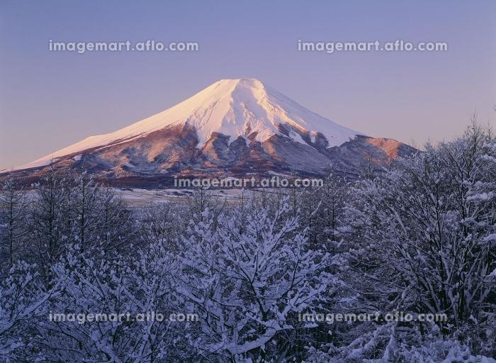 雪景の富士山